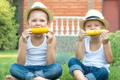 Deux frères s'asseyant sur l'herbe et manger l'épi de maïs dans le jardin photographie stock