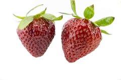 Deux fraises Photo stock