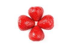 Deux fraises lavées fraîches rouges sur le fond blanc Fermez-vous vers le haut de la macro photo Images libres de droits