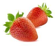 Deux fraises sur le fond blanc Photo libre de droits
