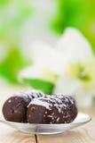 Deux gâteaux de chocolat avec la floraison Image stock