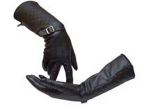 Deux gants femelles en cuir Photos libres de droits