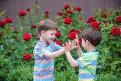 Deux garçons adorables d'enfants de frères jouant dehors ensemble Photographie stock