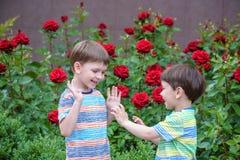 Deux garçons adorables d'enfants de frères jouant dehors ensemble Photos stock