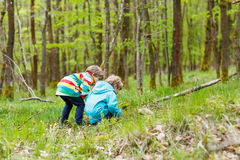 Deux garçons d'enfant marchant par la forêt le jour froid Images stock
