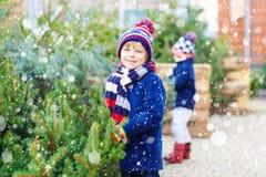 Deux garçons de petit enfant achetant l'arbre de Noël dans la boutique extérieure Image libre de droits
