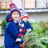 Deux garçons de petit enfant achetant l'arbre de Noël dans la boutique extérieure Photo stock