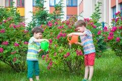 Deux garçons de petit enfant arrosant des roses avec la boîte dans le jardin Famille, jardin, faisant du jardinage, mode de vie Photographie stock