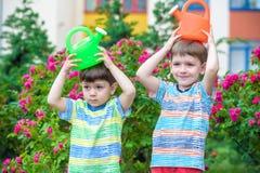 Deux garçons de petit enfant arrosant des roses avec la boîte dans le jardin Famille, jardin, faisant du jardinage, mode de vie Photographie stock libre de droits