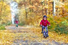 Deux garçons de petit enfant avec des bicyclettes dans la forêt d'automne Images stock