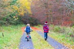 Deux garçons de petit enfant avec des bicyclettes dans la forêt d'automne Photos libres de droits