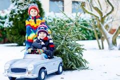 Deux garçons de petit enfant conduisant la voiture de jouet avec l'arbre de Noël Photographie stock libre de droits