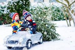 Deux garçons de petit enfant conduisant la voiture de jouet avec l'arbre de Noël Photo stock