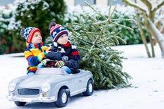 Deux garçons de petit enfant conduisant la voiture de jouet avec l'arbre de Noël Images stock