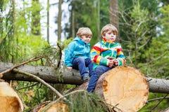 Deux garçons de petit enfant jouant dans la forêt le jour froid Image libre de droits