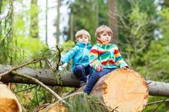 Deux garçons de petit enfant jouant dans la forêt le jour froid Photo stock