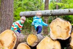 Deux garçons de petit enfant jouant dans la forêt le jour froid Photos libres de droits
