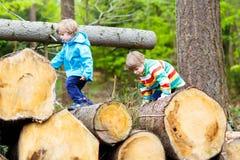 Deux garçons de petit enfant jouant dans la forêt le jour froid Images libres de droits