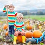 Deux garçons de petits enfants s'asseyant sur de grands potirons sur la correction Image stock