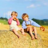Deux garçons et amis de petit enfant s'asseyant sur la pile de foin Images libres de droits