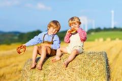 Deux garçons et amis de petit enfant s'asseyant sur la pile de foin Images stock