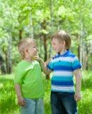 Deux garçons heureux d'amis à l'extérieur Photographie stock