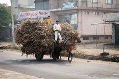 Deux garçons indiens conduisent un cheval avec le chariot chargé sur une route Images libres de droits