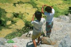 Deux garçons pêchant à un étang Photographie stock libre de droits