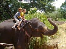 Deux garçons s'asseyent sur un éléphant Photographie stock