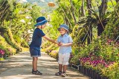 Deux garçons, un voyageur au Vietnam contre le contexte des chapeaux vietnamiens Photo libre de droits