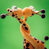 Deux girafes et un baiser Photos libres de droits