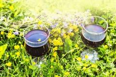 Deux glaces avec le vin rouge image stock