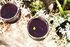 Deux glaces avec le vin rouge images libres de droits