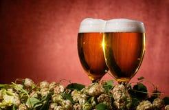 Deux glaces de bière avec l'houblon Images libres de droits
