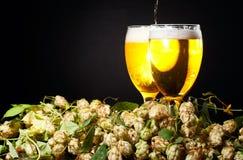 Deux glaces de bière avec l'houblon Photo libre de droits
