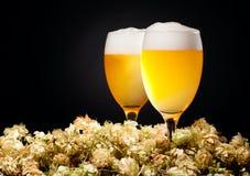 Deux glaces de bière avec l'houblon Images stock