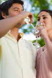 Deux glaces de boissons d'amis de champagne Photo libre de droits
