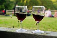 Deux glaces de vin Images stock