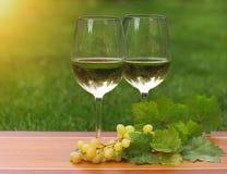 Deux glaces de vin blanc Photos libres de droits