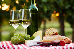 Deux glaces de vin blanc Images libres de droits