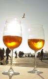 Deux glases de la boisson vénitienne et d'une mouette Image libre de droits