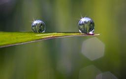 Deux gouttes de l'eau Photo stock