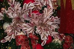 Deux grandes fleurs roses sur l'arbre de Noël Photographie stock