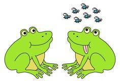 Deux grenouilles attendant des mouches Photographie stock libre de droits