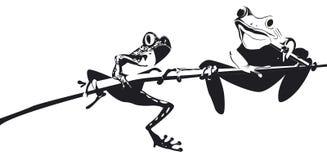 Deux grenouilles sur la branche en noir et blanc Image libre de droits