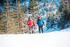 Deux grimpeurs sont dans les montagnes Photo libre de droits