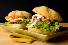 Deux hamburgers savoureux Photos libres de droits