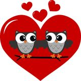 Deux hiboux dans l'amour Photo stock