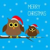 Deux hiboux mignons. Chapeaux de Noël. Flocons de neige. Joyeux C illustration de vecteur