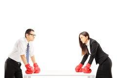 Deux hommes d'affaires fâchés avec des gants de boxe ayant un argument photo libre de droits